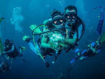 unterwasser hochzeit in bali