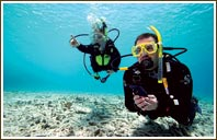 bali scuba dive packages