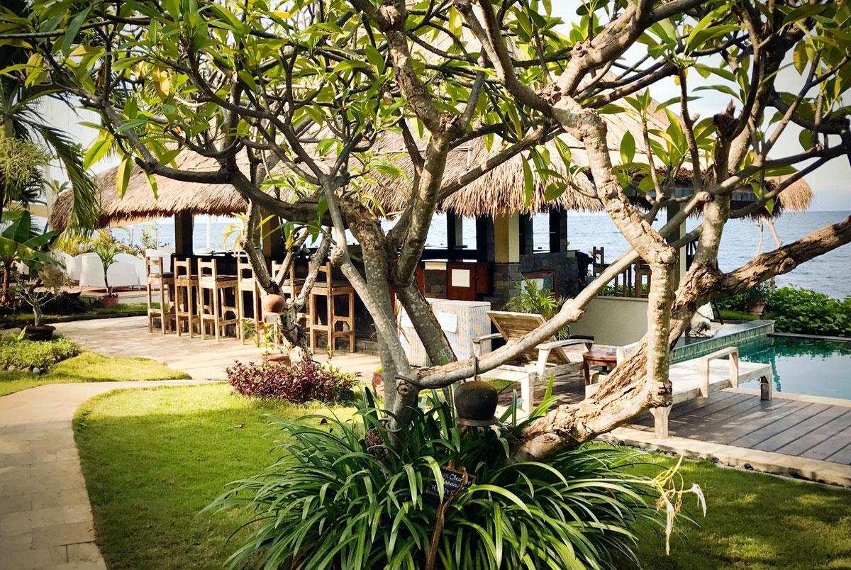 bali strand bar